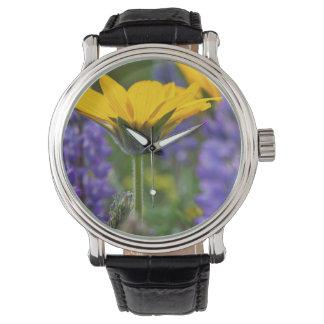春の開花のArrowleafのバルサムの根そしてLupine 腕時計