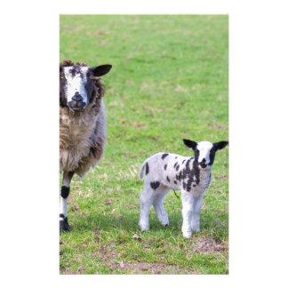 春の2頭の生まれたばかりのな子ヒツジを持つヒツジを生み出して下さい 便箋