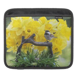 春の《鳥》アメリカゴガラのiPadの袖 iPadスリーブ