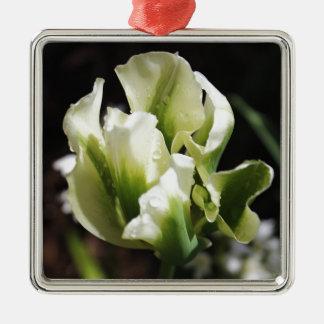 春はチューリップの庭の植物の写真撮影に沢山与えます メタルオーナメント