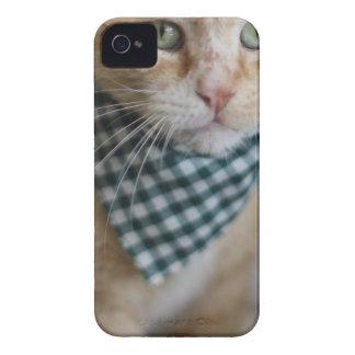 春クロウド Case-Mate iPhone 4 ケース