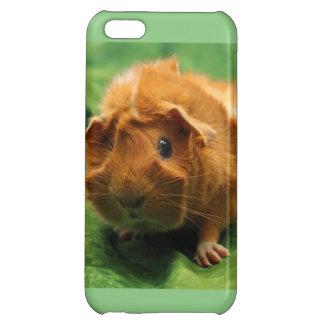 春時間モルモットの電話箱 iPhone 5C カバー