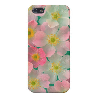 春雨 iPhone 5 CASE