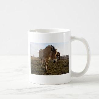 春 コーヒーマグカップ