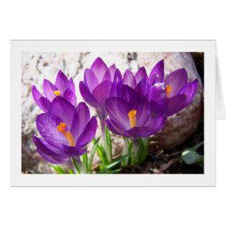 春Notecardのシンボルや象徴 カード