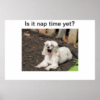 昼寝の時間犬 ポスター