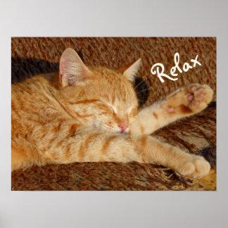 昼寝-リラックスさせるな猫 ポスター