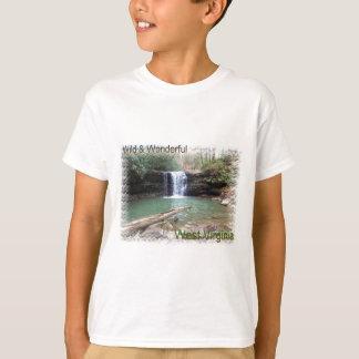 景色のアパラチア山脈の滝 Tシャツ