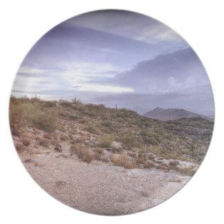 景色のアリゾナ プレート