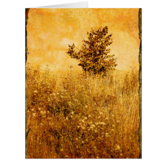 景色の古い写真 カード