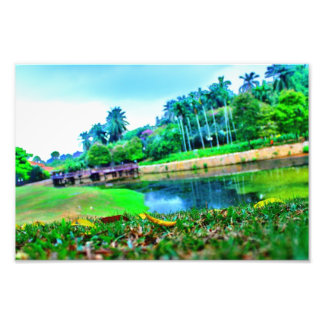 景色の庭 フォトプリント