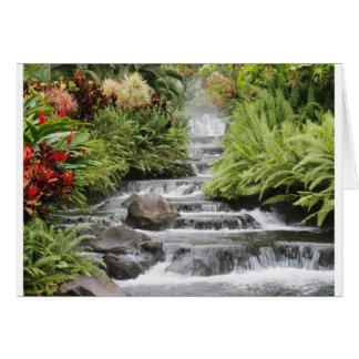 景色の滝 カード