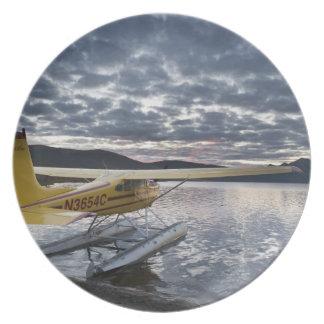 景色のTakahula湖2のfloatplane プレート