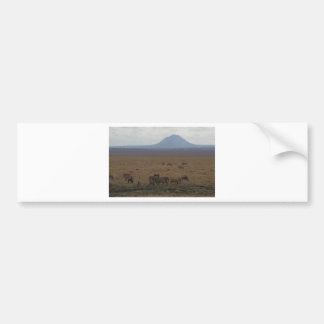 景色タンザニアトムWurl バンパーステッカー