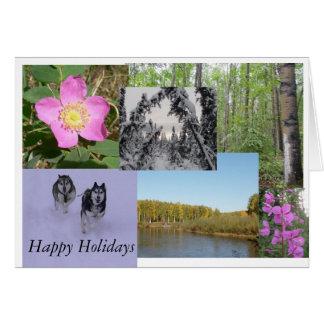 景色 カード