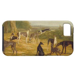 景色(キャンバスの油)の9匹のグレイハウンド iPhone SE/5/5s ケース