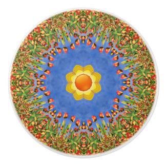 晴れた日のカラフルな陶磁器のノブ セラミックノブ