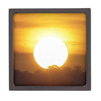 暖かい日没の金地平線 ギフトボックス
