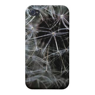 暗いタンポポのiPhone 4の光沢のある終わりの場合 iPhone 4/4Sケース