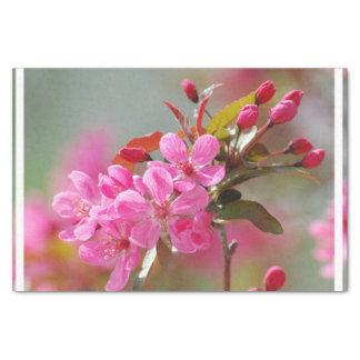 暗いピンクの桜 薄葉紙