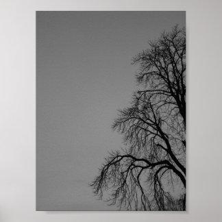 暗い木 ポスター