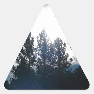 暗い木、軽い空 三角形シール