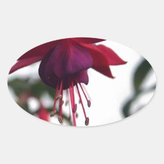 暗い赤紫色 楕円形シール