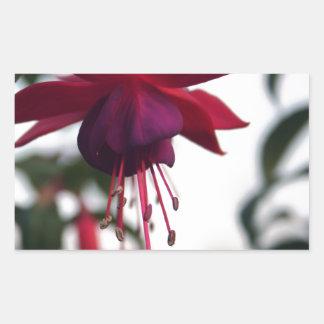 暗い赤紫色 長方形シール