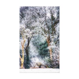 曇らされた森林HDR キャンバスプリント