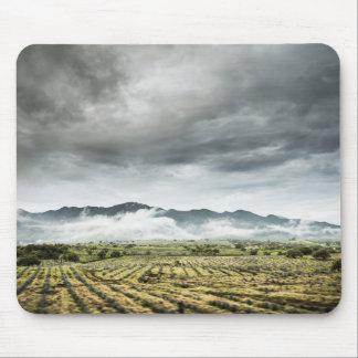 曇り空の下の田園穀物分野 マウスパッド