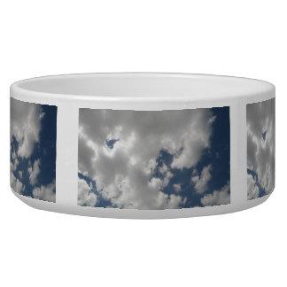 曇り空犬ボール