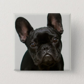最もかわいいフレンチ・ブルドッグの子犬 5.1CM 正方形バッジ