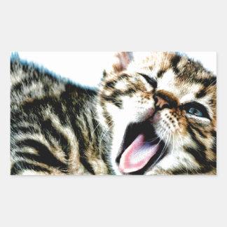 最もかわいい子ネコ!!! 長方形シール