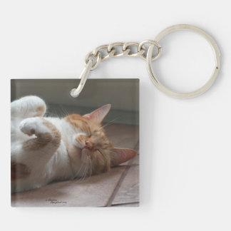 最もかわいい猫の睡眠Keychain キーホルダー