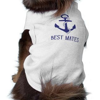 最も最高のな仲間のいかりの一致犬および人間 ペット服