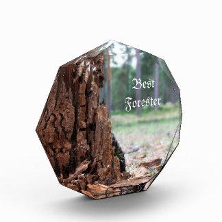 最も最高のな森林官賞 表彰盾