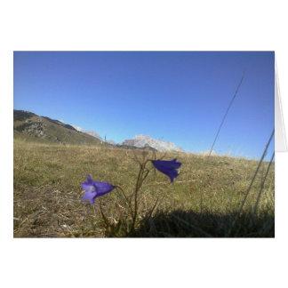 最初に山の春のサフラン カード