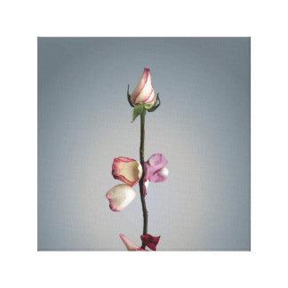 最後の花弁まで… キャンバスプリント