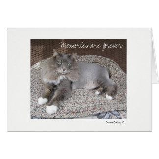 最高猫のメッセージカード ノートカード