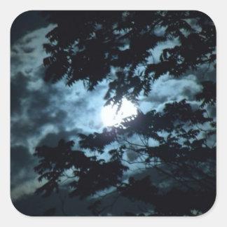 月はツリーブランチの後ろの夜を照らします スクエアシール
