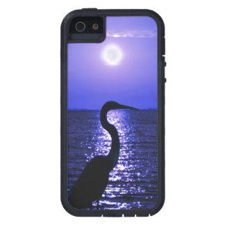 月光の素晴らしい青鷲 iPhone SE/5/5s ケース