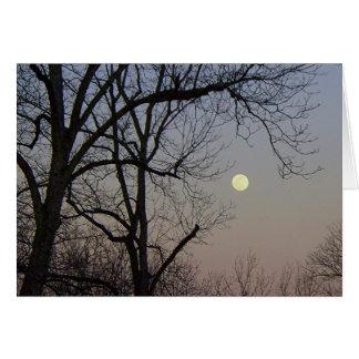 月光 グリーティングカード