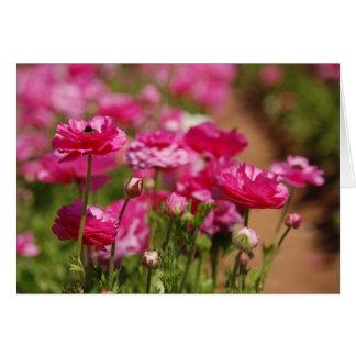 月桂樹によるRanunculasのピンクのデザイン カード