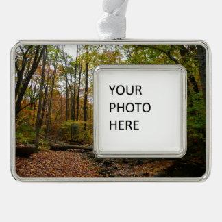 月桂樹の丘の州立公園の秋の入り江 シルバープレートフレームオーナメント