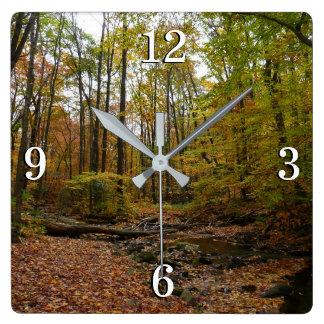月桂樹の丘の州立公園の秋の入り江 スクエア壁時計