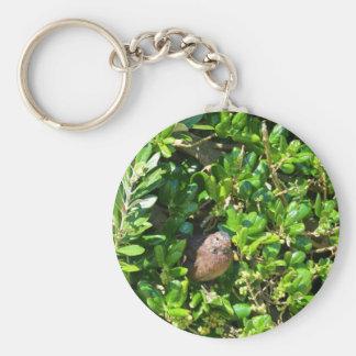月桂樹の薮のクロドリ キーホルダー
