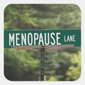 月経閉止期-成長した女性-女性 スクエアシール