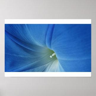 朝の開花 ポスター