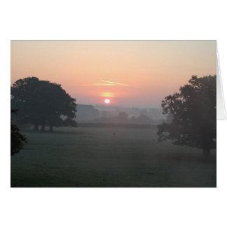 朝の霧 カード
