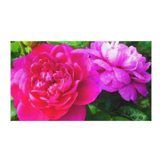朝の露を持つバラ キャンバスプリント